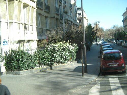 Ах, Париж...мой Париж....( Город - мечта) - Страница 6 0_e1f72_67344141_L