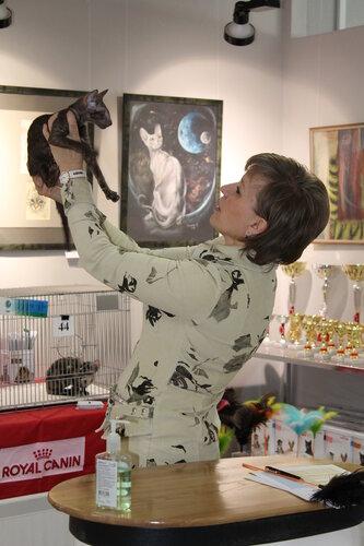 """Международная выставка кошек AFC """"Удивительные лесные кошки"""", 1 марта 2014 г. Сургут - Страница 2 0_e481e_2a9a757c_L"""