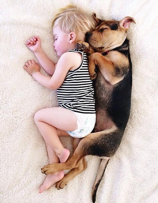 Fotografije djece i kučnih ljubimaca - Page 3 0_11d90d_33fae6ff_XL