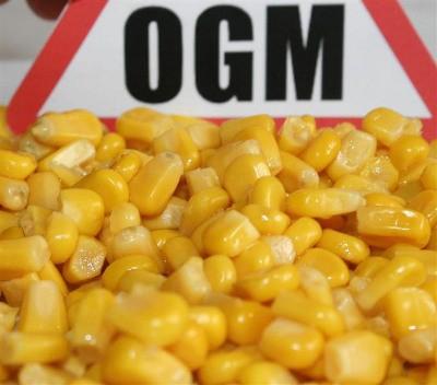 Les OGM à l'épreuve de la démocratie Seralini-ogm-3ed3f
