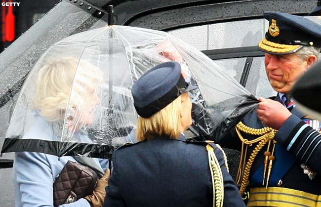 Príncipes William y Harry BrollyProbG_650x419