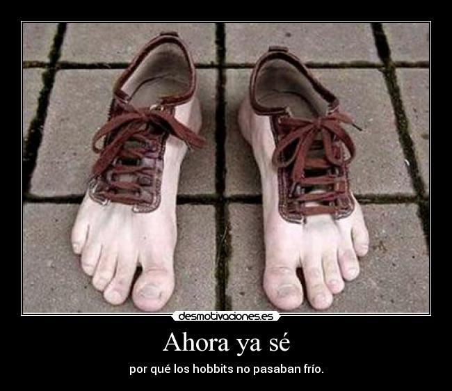 Cual consideran que es el mejor calzado para la salida? Pies_4