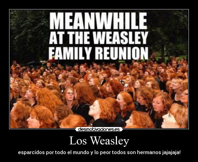 Familia Weasley 314745_255960367770930_213400048693629_832018_1423811565_n