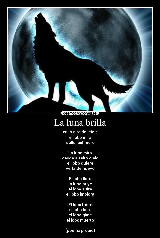 MOON NIGHT - Página 6 Lobo_6