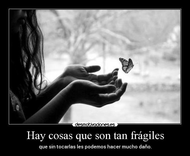 ** Fragile ** Mariposa_5