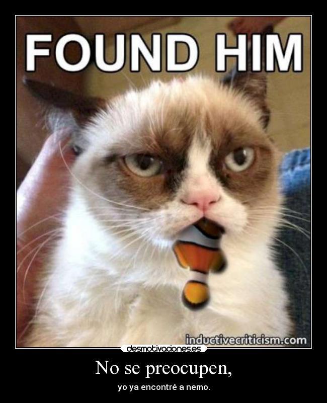 el gato gruñon ¡en todas partes! GrumpycatnemoW630