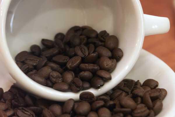 Expertos recomiendan entre 4 y 6 cafés diarios Claudio-vera_122621-L0x0