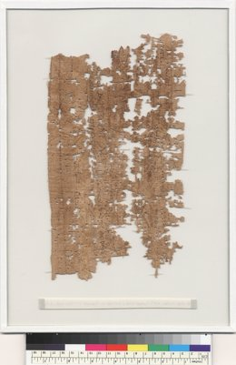 El contenido de una carta que escribió un soldado egipcio hace 1.800 años Fotonoticia_20140308120038_260