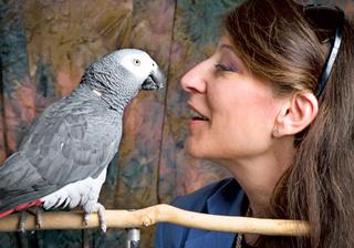 Prominent scientists sign declaration that animals have conscious awareness, just like us Ku-medium