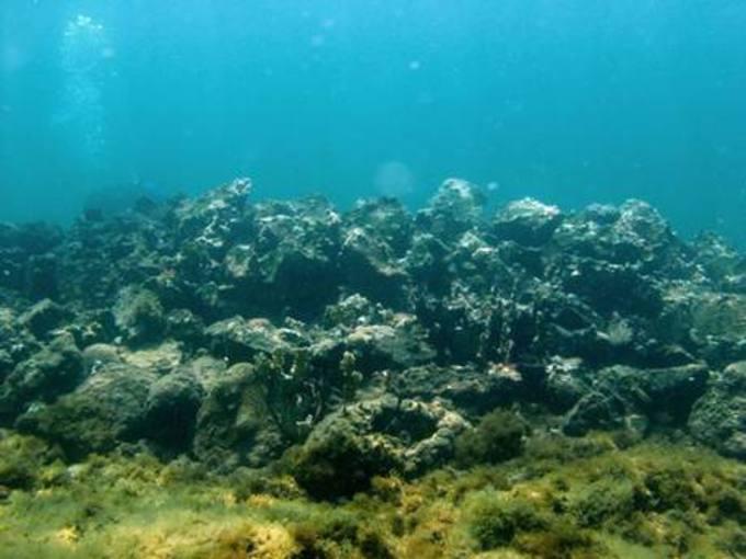 Hallan en el Caribe lo que podrían ser los restos de la carabela Santa María de Cristóbal Colón 1399969278776