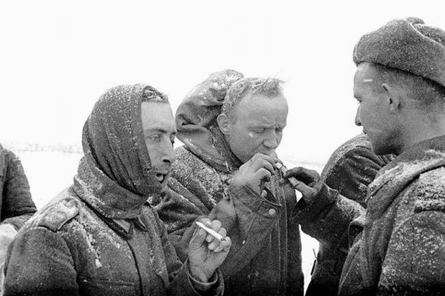 Сталинград: великая победа великой войны! 01lab2haq1282913437
