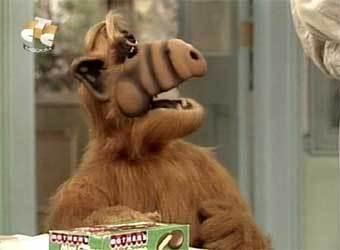 Альф/Alf ..... Picture