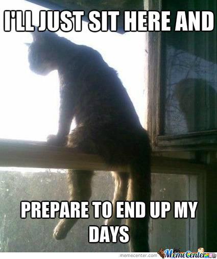 Musique de m*rde à partager Depressed-cat_o_994950