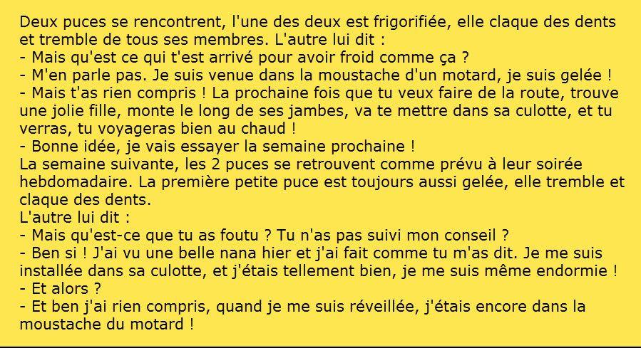 LE CERCLE DES AMIS DU FORUM - Page 2 Ob_ba6e6c_moustachedumotard