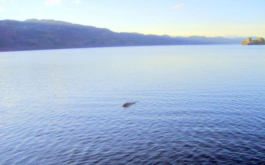 Une nouvelle explication pour le Loch Ness Ob_8d71326759800ce5191c904e78735255_nessie-edwards