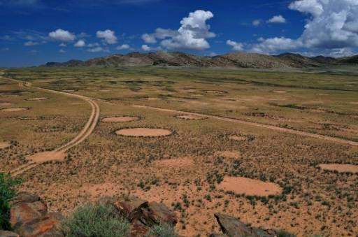 Les mystérieux cercles de fées de Namibie sont « vivants » Ob_aa572d5a2866d9a2360e4dbce5cf9e38_cercles