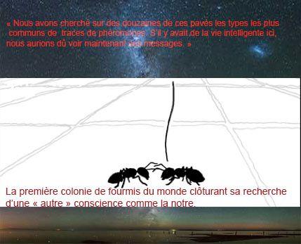 Le paradoxe de Fermi et les extraterrestres invisibles - Page 4 Ob_2d1baa_fermi-ou-fourmi1