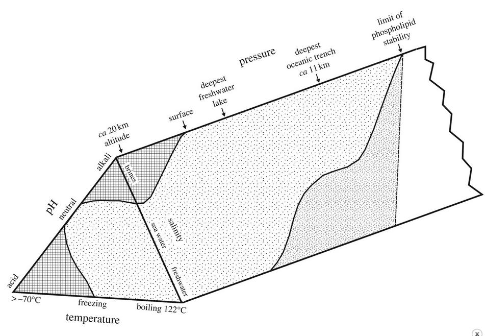 Les implications d'un éventuel contact avec des Extraterrestres - Page 39 Ob_5c56d9_capture-d-ecran-2015-04-13-a-07-20