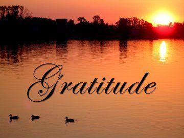 PRIERE pour notre Frère GILLES - Page 3 Ob_044be090a5149a6bd713c4538e4c08e5_gratitude