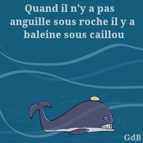 A RIRE OU EN PLEURER OU REVUE DE PRESSE SATIRIQUE - Page 13 Ob_3cccea_baleinesouscaillou