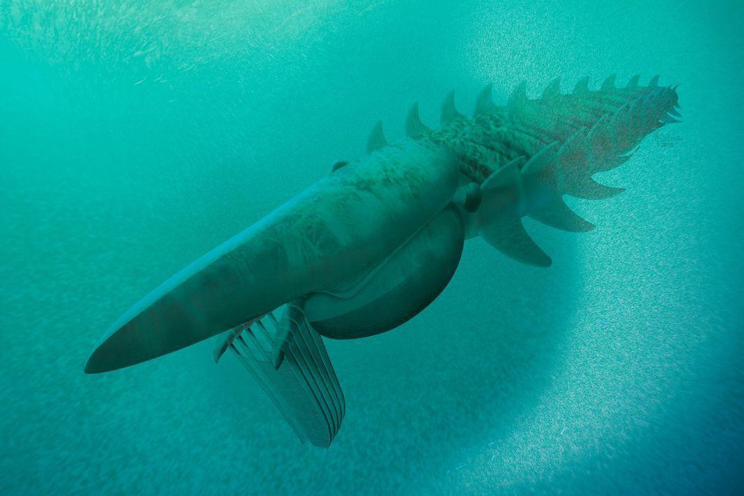 Voici le nouveau monstre marin préhistorique Ob_afd6c8_mons