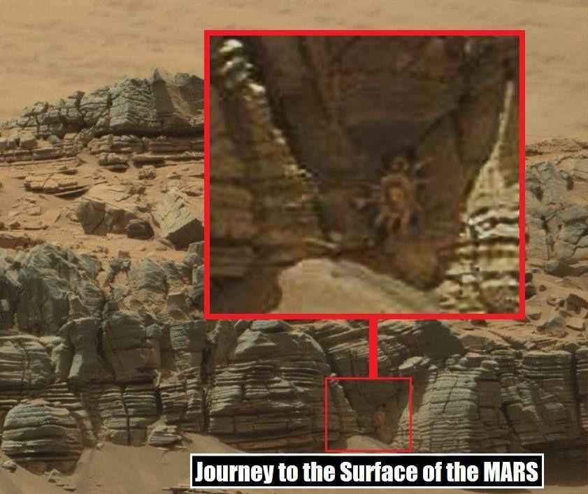 Un crabe géant sur Mars agite Internet Ob_e8141a_11813399-407258876149673-5730642828996