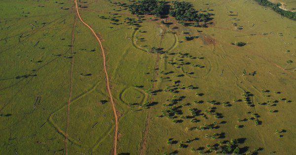 De mystérieux géoglyphes découverts en Amazonie intriguent les scientifiques Ob_d8396d_vgzpamdi
