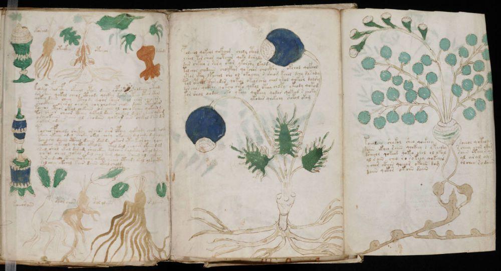 Le manuscrit de voynich - Page 2 Ob_2e084e_1041123217