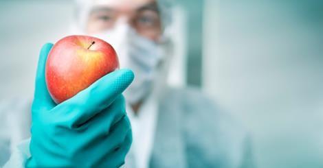 Aliments irradiés, mauvaises ondes dans nos assiettes ?  Ob_99d260_safe-image