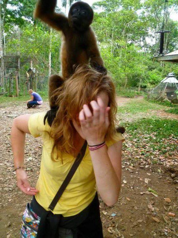 Nos amis, les animaux(quand ils font semblant d'être bête) - Page 6 Ob_4cd8fa_galerie-images-droles-insolites-et-s