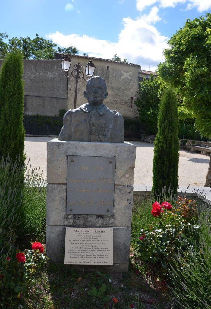 Le chasseur Albert Roche, premier soldat de France . Ob_083cde_roche-buste