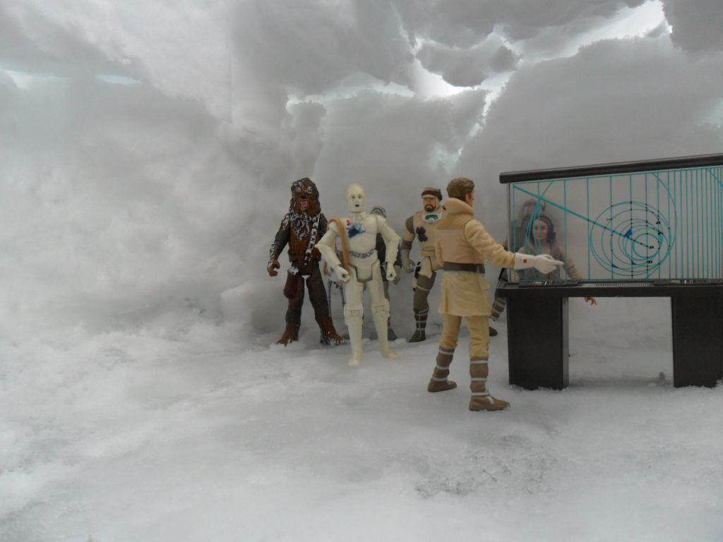 petit diorama avec la neige qui est tombé Ob_e1afc4_sam-0010