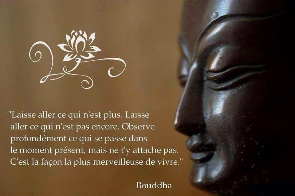 Citations que nous aimons - Page 6 Ob_097079_ob-642850-a-bouddha-fb