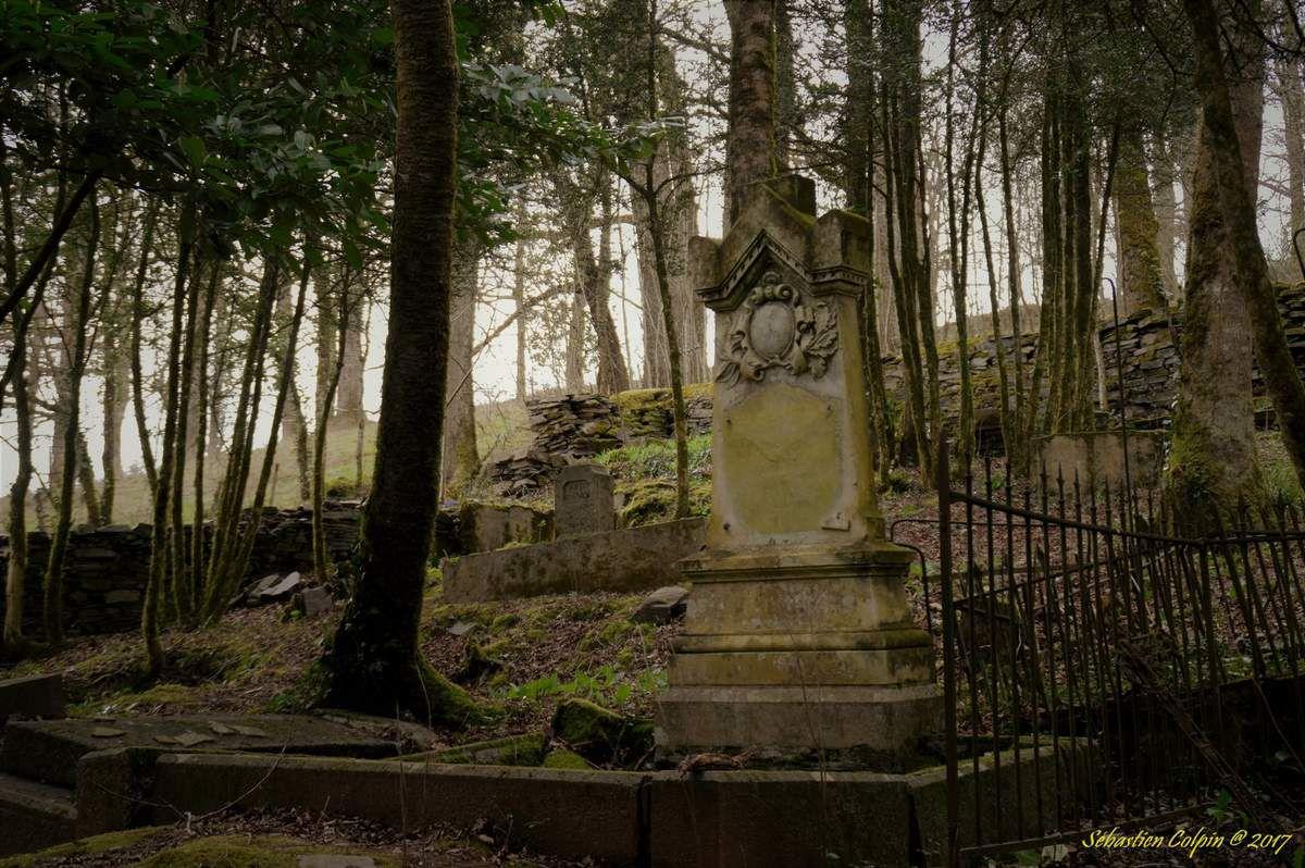 Un cimetière du XIXème siècle découvert dans un bois Ob_c68fbb_dsc5618-copier