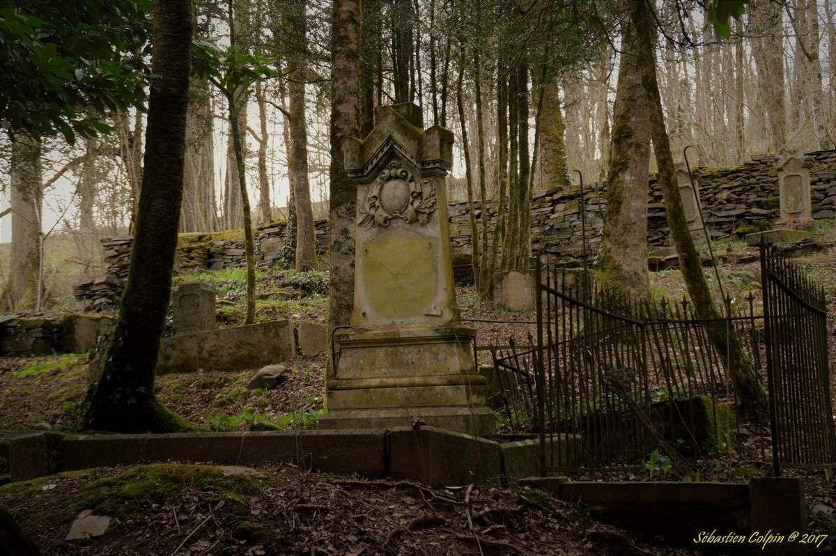 Un cimetière du XIXème siècle découvert dans un bois Ob_e101f8_dsc5573-copier