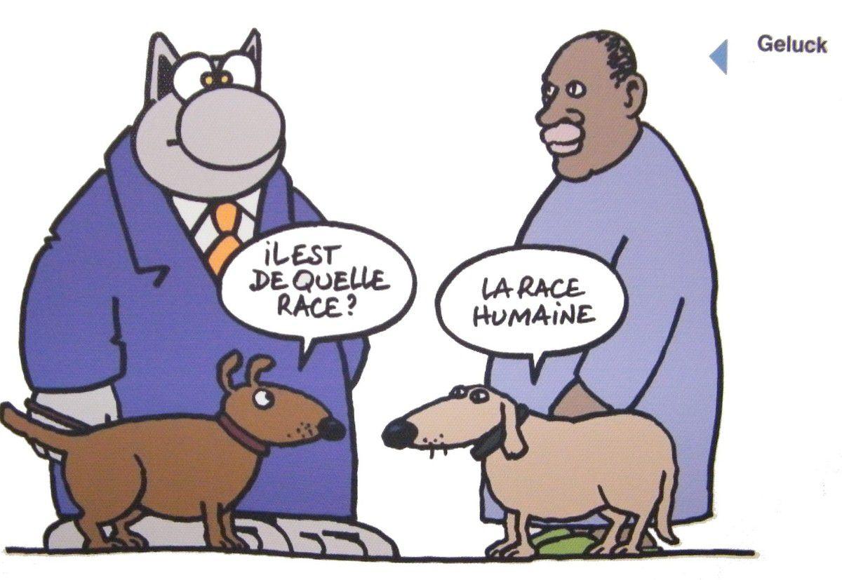☺Rions un Peu ☺!!!!! - Page 7 Ob_5346b1_racisme-chiens