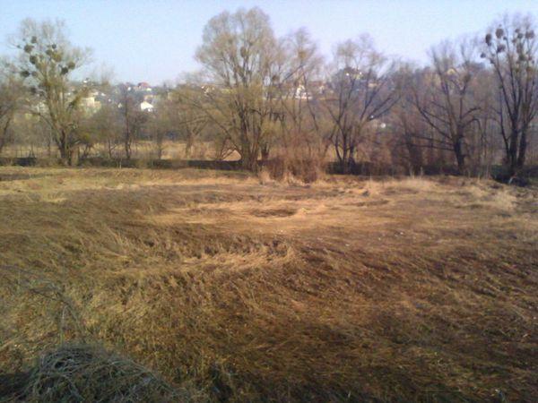 Etranges cercles au sol à Kiev en Ukraine Ob_09f4ad9b9df4f56954b44f707822e119_kiev-cercles