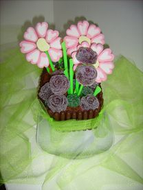 jardinière et pot de fleurs - Page 2 Photo-304