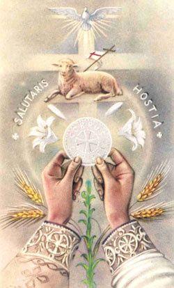 Témoignage de Catalina sur la Sainte messe (1) Eucharist.1.pol-w
