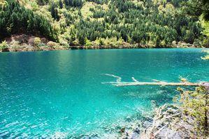 un joli site à découvrir par blucat (21juillet)trouvé par ajonc et snoopie - Page 2 Jiuzhaigou---Sichuan-0134