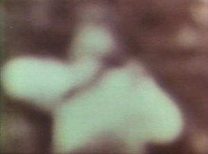 l' assassinat  de Kennedy . Photo  de  l' un des tireurs TIREUR-PALISSADE-MOINS-NET