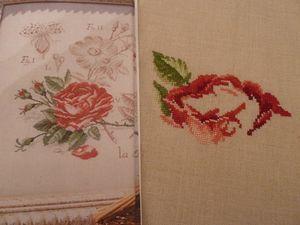 Une nouvelle Rose de Véronique Enginger P1040082