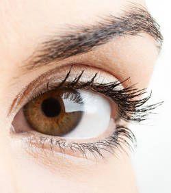 Les personnes aux yeux marron semblent plus dignes de confiance Marrons