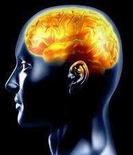 La croyance en Dieu modifierait une partie du cerveau CERVEAU