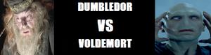 Le Grand Débat -Dumbledore vs Voldemort- D-vs-v