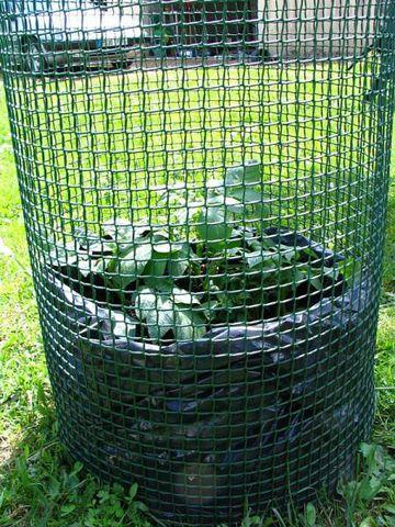 Pomme de terre - Page 2 Tour-patates-_16_
