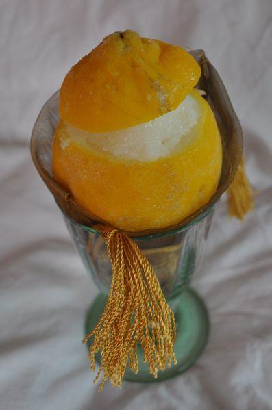 Sorbet au citron Citron-givre-2