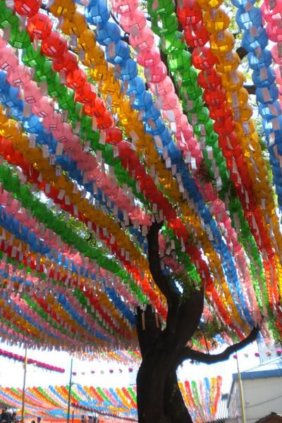 Happy Birthday Bouddha Corée CIMG4339