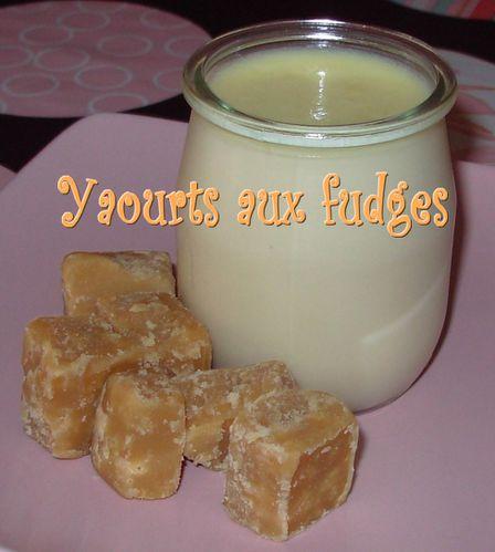 Yaourts aux fudges Yaourts-aux-fudges2