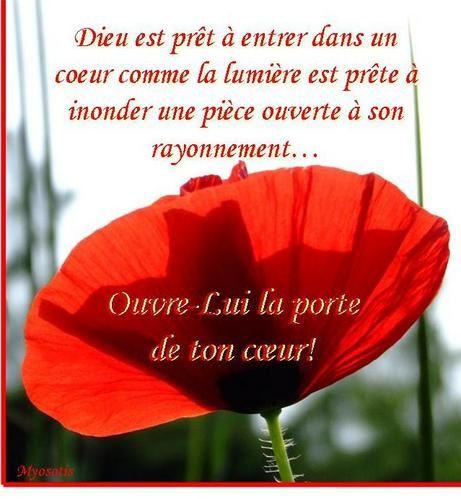 La joie de l'Évangile/Citation/46/47 Ouvre_la_porte_de_ton_coeur